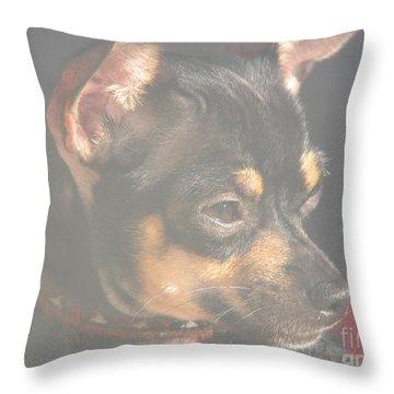 Bella Throw Pillow by Greg Patzer