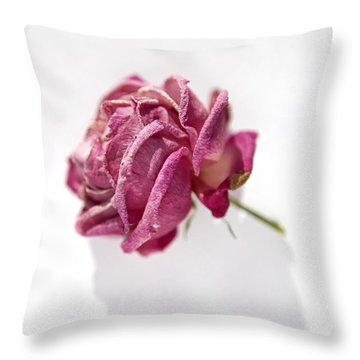Bella Rose Throw Pillow by Linde Townsend