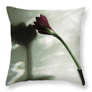 Throw Pillow featuring the photograph Belle Ombre by Patricia Strand