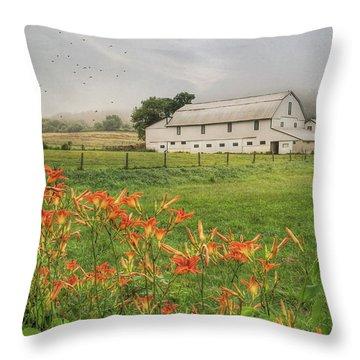 Belleville Morning Throw Pillow by Lori Deiter