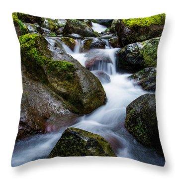 Below Rainier Throw Pillow