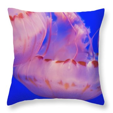 Below The Surface Throw Pillow by Jack Zulli
