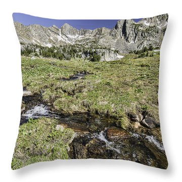 Below The Tarn Throw Pillow