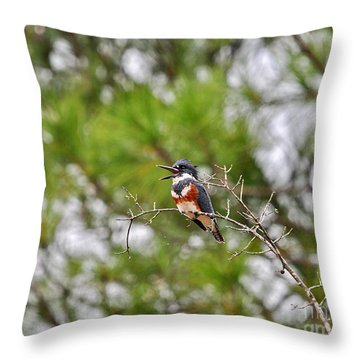 Belting Belted Throw Pillow by Al Powell Photography USA
