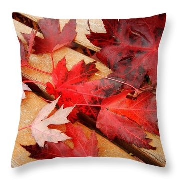 Bench Cushion Throw Pillow