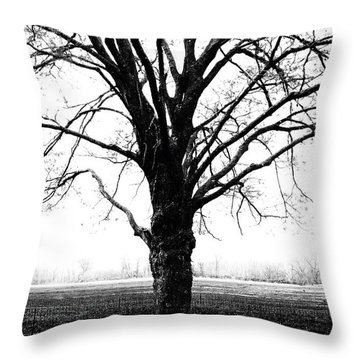 Bench In Cold Winter Throw Pillow
