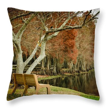 Bench With A View Throw Pillow by Carolyn Marshall