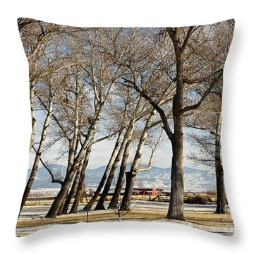 Bench With A View Throw Pillow by Sue Smith
