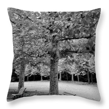 Benches In The Park Throw Pillow