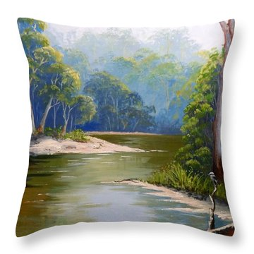 Bend In The River Throw Pillow