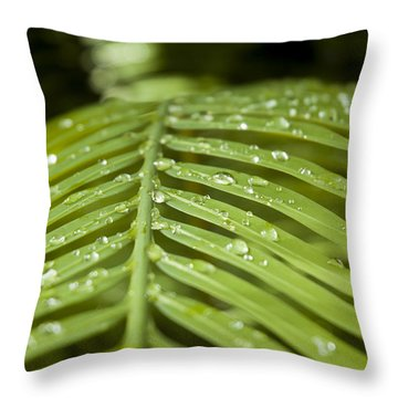Throw Pillow featuring the photograph Bending Ferns by Carolyn Marshall