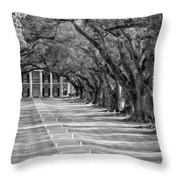 Beneath Live Oaks Bw Throw Pillow by Steve Harrington