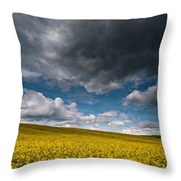 Beneath The Gloomy Sky Throw Pillow by Davorin Mance