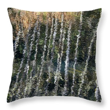 Beneath The Reflection Throw Pillow by Roxy Hurtubise