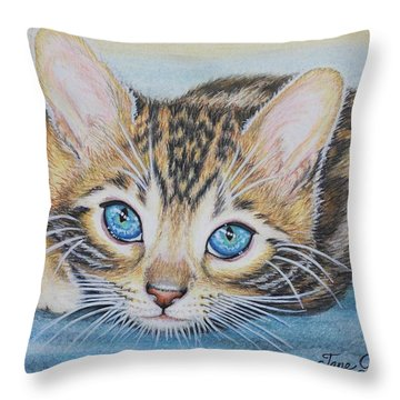 Bengal Kitten Throw Pillow