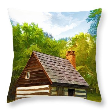 Throw Pillow featuring the photograph Benjamin Banneker Cabin by Dana Sohr