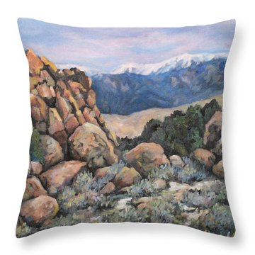Throw Pillow featuring the painting Benton by Donna Tucker
