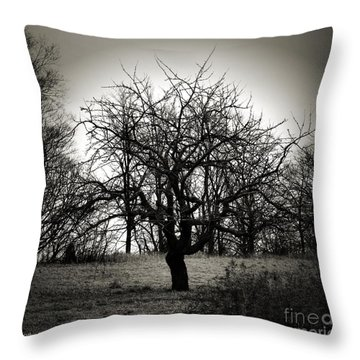Throw Pillow featuring the photograph Bereft by Heather King