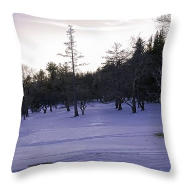 Berkshires Winter 5 - Massachusetts Throw Pillow by Madeline Ellis