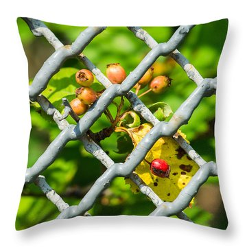 Berries And The City - Featured 3 Throw Pillow by Alexander Senin