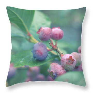 Berries For You Throw Pillow by Rachel Mirror