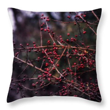 Berries  Throw Pillow by Heather L Wright
