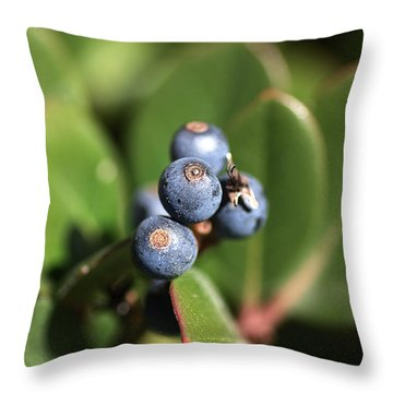 Berries Of Blue Throw Pillow by Joy Watson