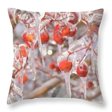 Berries On The Rocks Throw Pillow