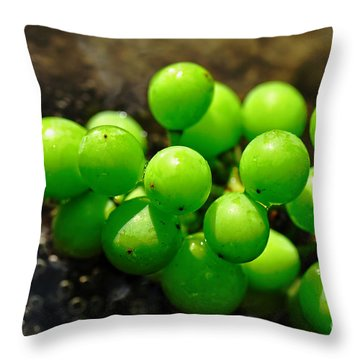 Berries On Water Throw Pillow by Kaye Menner