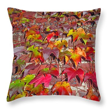 Berries Vines And Brick Throw Pillow by Barbara McDevitt