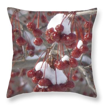 Berry Basket Throw Pillow
