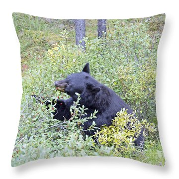Berry Bear Throw Pillow