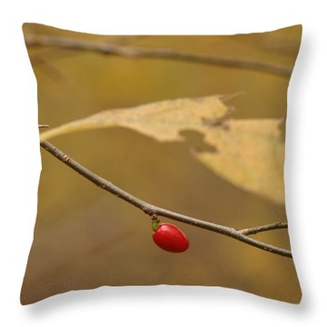 Berry Throw Pillow by Mark Russell