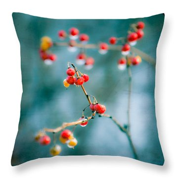 Berry Nice - Red Berries - Winter Frost Icy Red Berries - Gary Heller Throw Pillow by Gary Heller