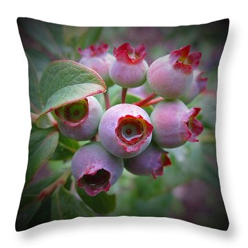 Berry Unripe Throw Pillow by MTBobbins Photography