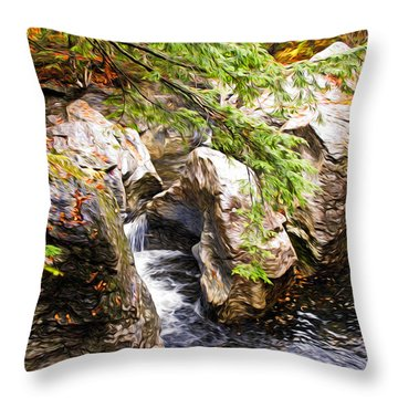 Beside The Water Throw Pillow by Bill Howard