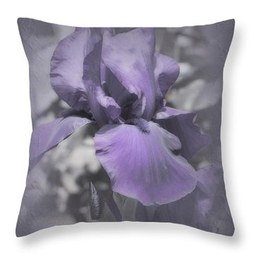 Throw Pillow featuring the photograph Bess by Elaine Teague