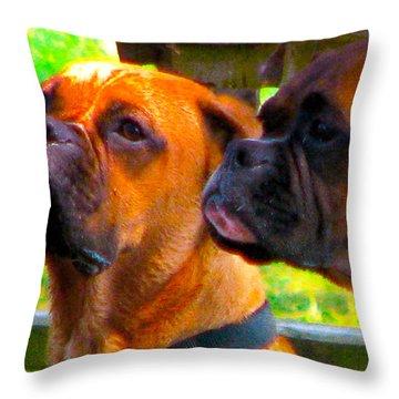 Best Friends Dog Photograph Throw Pillow by Laura Carter