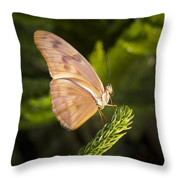 Best Side Of The Butterfly Throw Pillow by Jean Noren