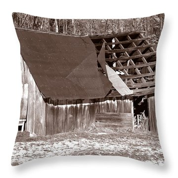 Throw Pillow featuring the photograph Better Days by Craig T Burgwardt