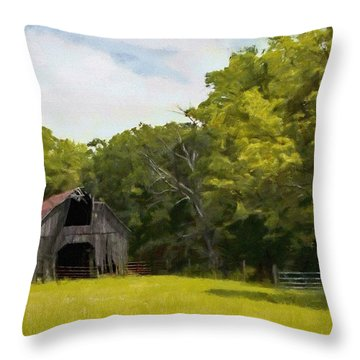 Throw Pillow featuring the painting Better Days by Jeff Kolker