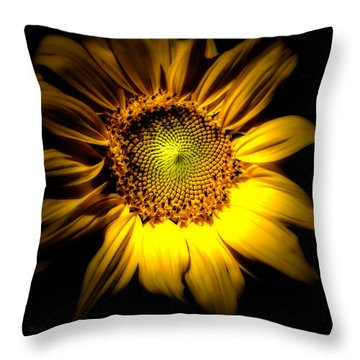 Between Here And There Throw Pillow by Bob Orsillo