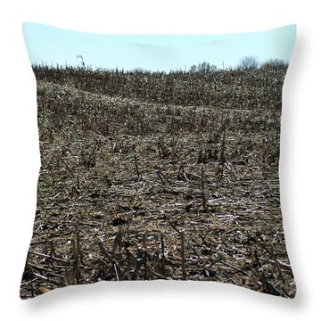 Between Sky And Field Throw Pillow by Joseph Yarbrough