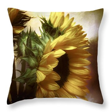 Throw Pillow featuring the photograph Between The Shadows by John Rivera