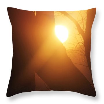 Between Trees Throw Pillow