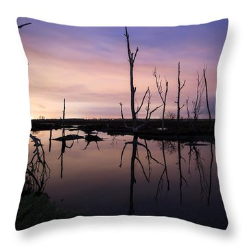 Between Two Worlds By Denise Dube Throw Pillow