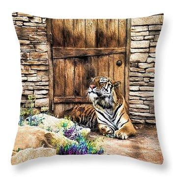 Beware Of House Cat Beautiful Tiger Throw Pillow