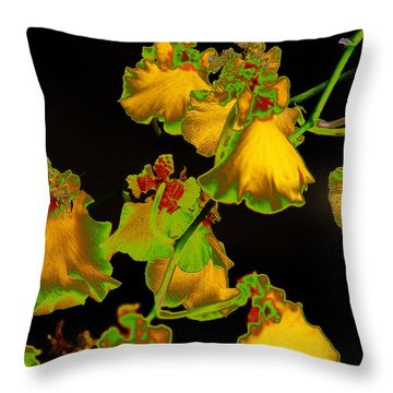 Throw Pillow featuring the photograph Beyond Beyond by Ira Shander