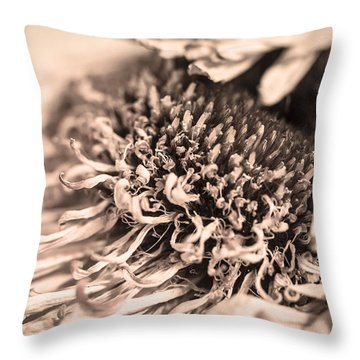 Beyond The Pedals Throw Pillow