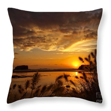 Throw Pillow featuring the photograph Beyond The Reeds by Trena Mara